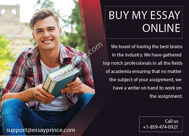 Wondering where to buy my essay online? Look no further than essayprince.com